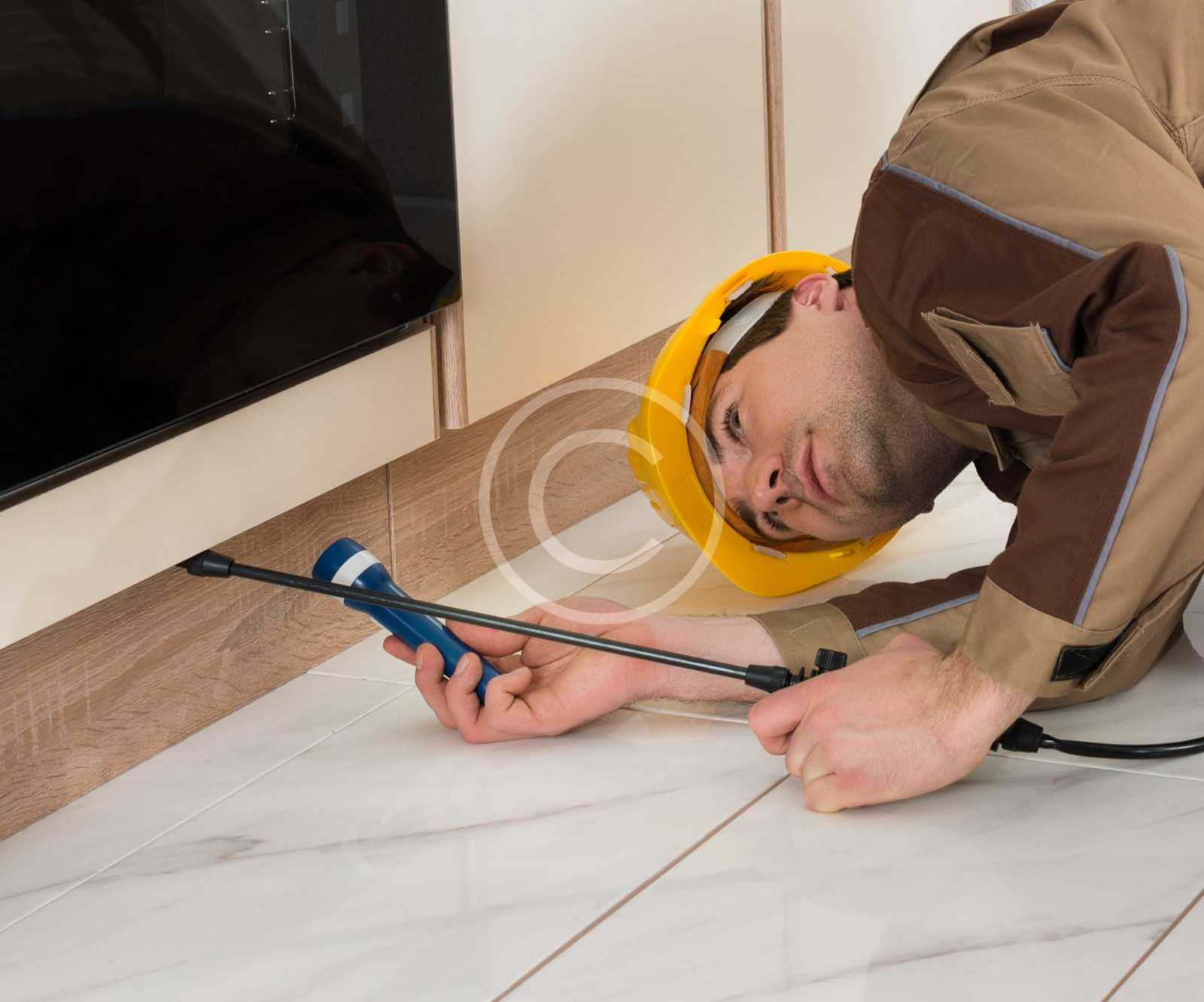 Pest Proofing Service